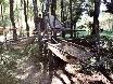 Hängematten im Wald, einziges Problem die Mücken.