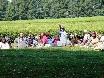 Teeplantagenarbeiterin wie vor hundert Jahren.