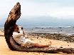 80km entfernt nur 200m weit weg Whale-Whale-Whale in Witesand.